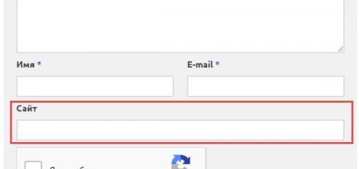 Форма комментирования до включения плагина Remove URL Field